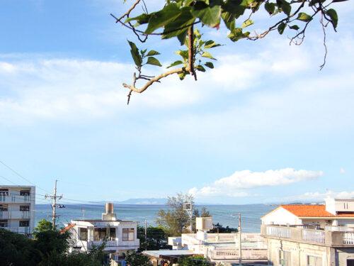 庭からのオーシャンビュー(長浜海岸)