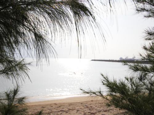 イメージ写真ではありません。リアルにこの海がすぐそこにあります。