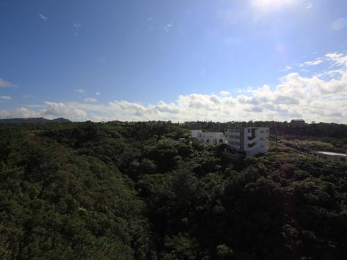 景色は最高!さすが自然豊かな恩納村!