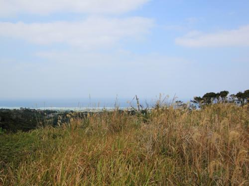 近くに行くとこのような景色が広がっております!