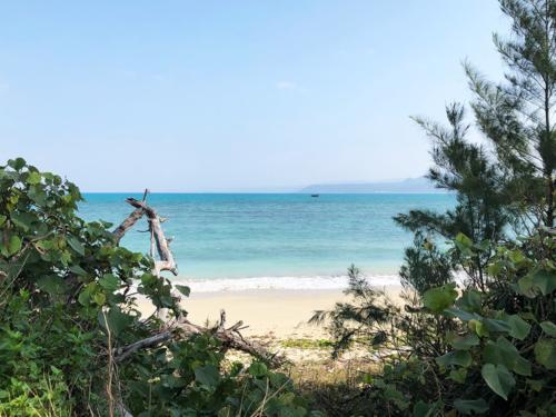 こちらが物件目の前からの海の景色でございます!