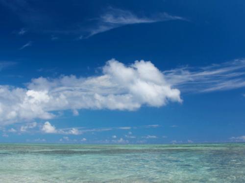 お家から水着で飛び出してそのまま海へダイブ!!なんてことも可能!
