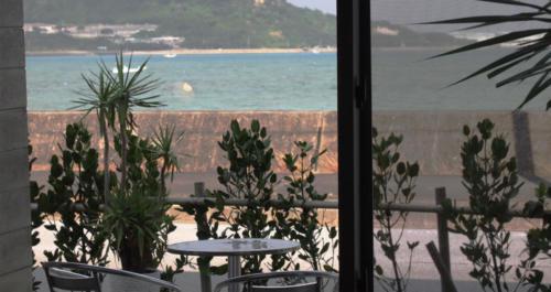 窓から見る景色もお洒落に感じます。